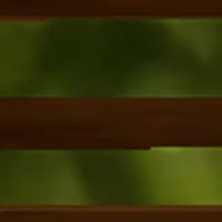 event-zoom-16.jpg