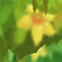 event-zoom-17.jpg