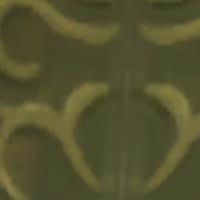 event-zoom-9.jpg