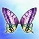 3843-ButterflyWing00_4ceb7b1e-be74-11e0-ae11-000c294b363e_8aa5df57-024e-11e7-a285-02000a1038af.jpg
